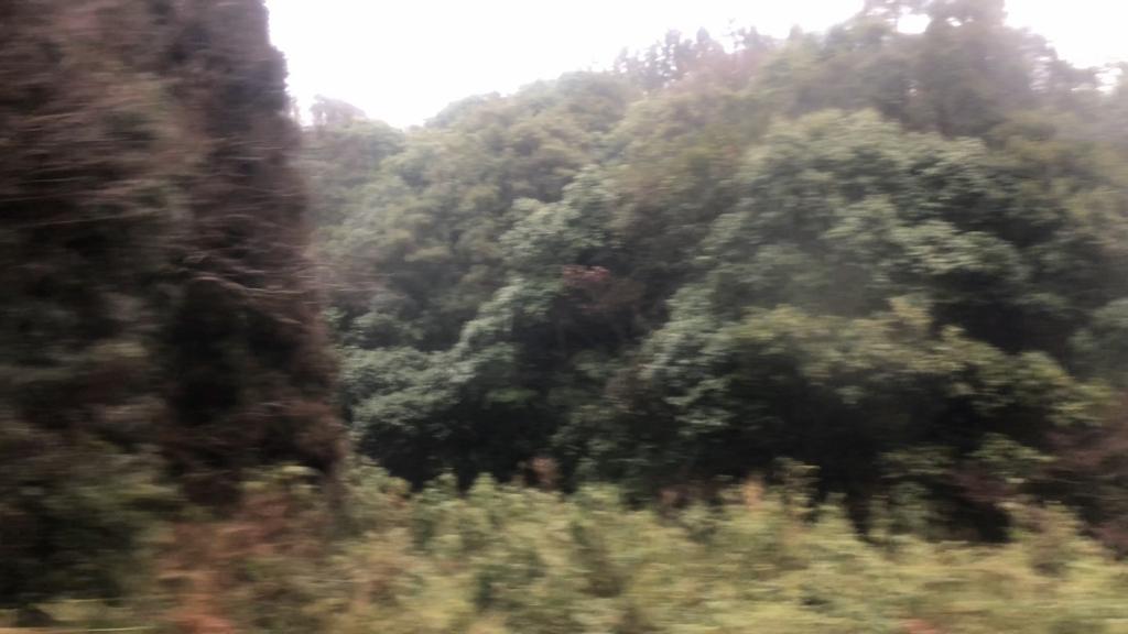 f:id:UrushiUshiru:20180217182608j:plain