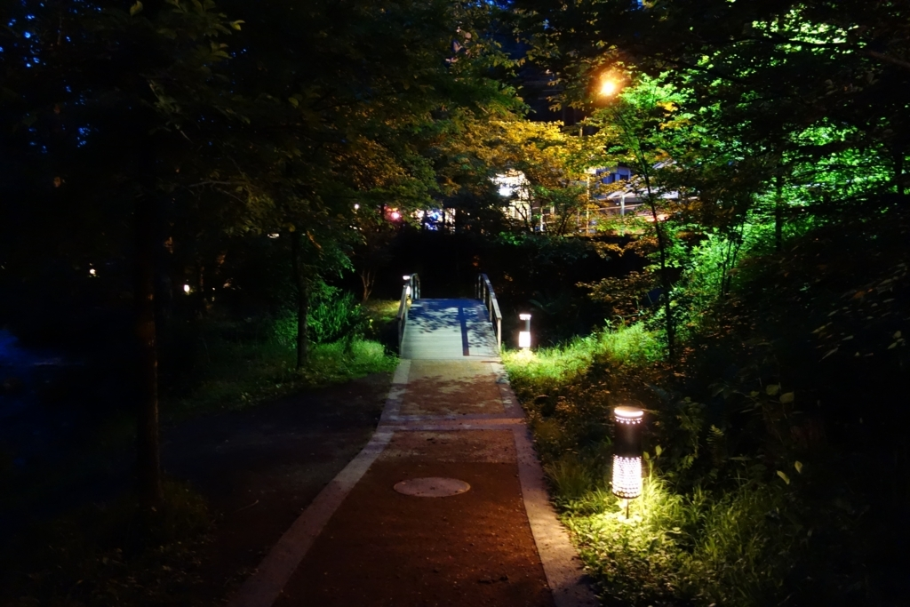 f:id:UrushiUshiru:20180615154432j:plain
