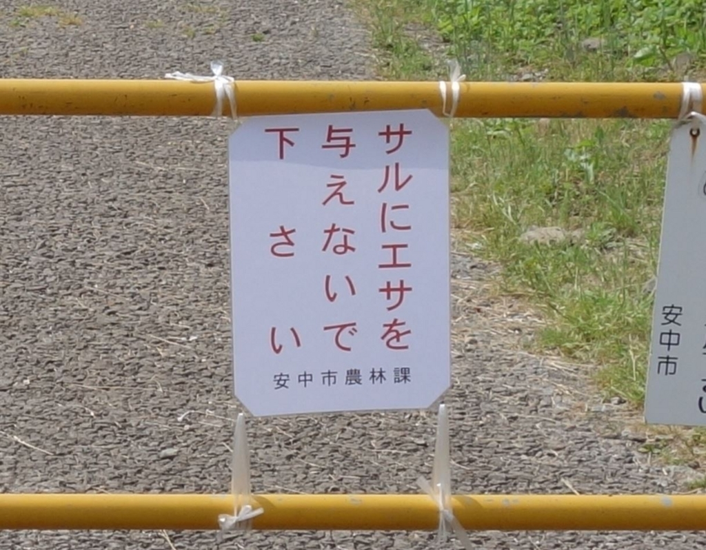 f:id:UrushiUshiru:20180708012357j:plain