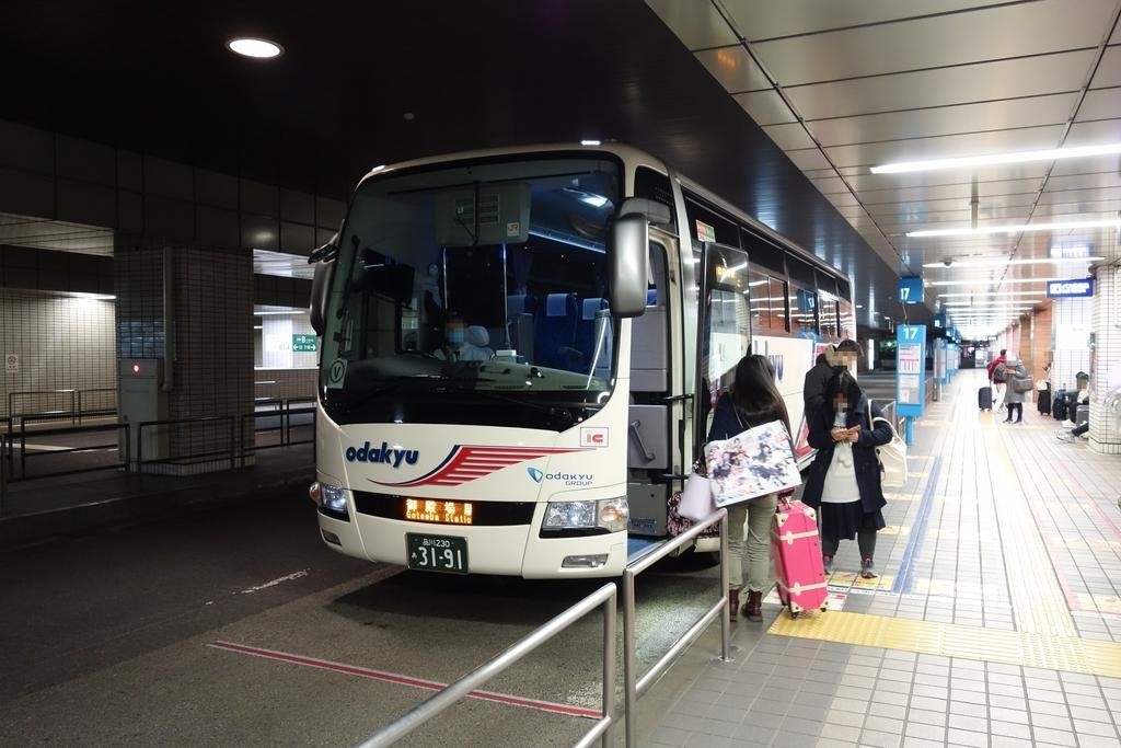 f:id:UrushiUshiru:20190106021941j:plain
