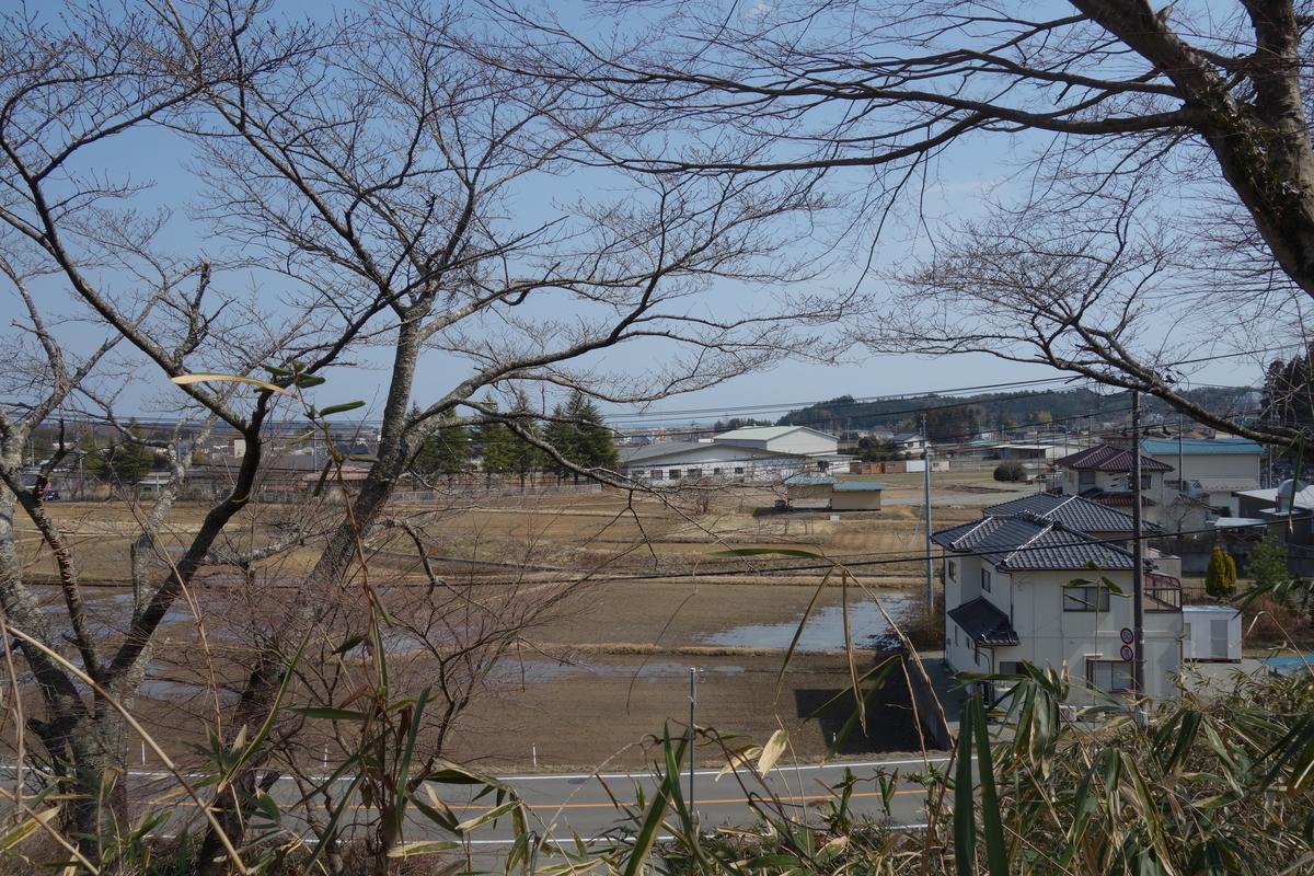 f:id:UrushiUshiru:20190316231251j:plain