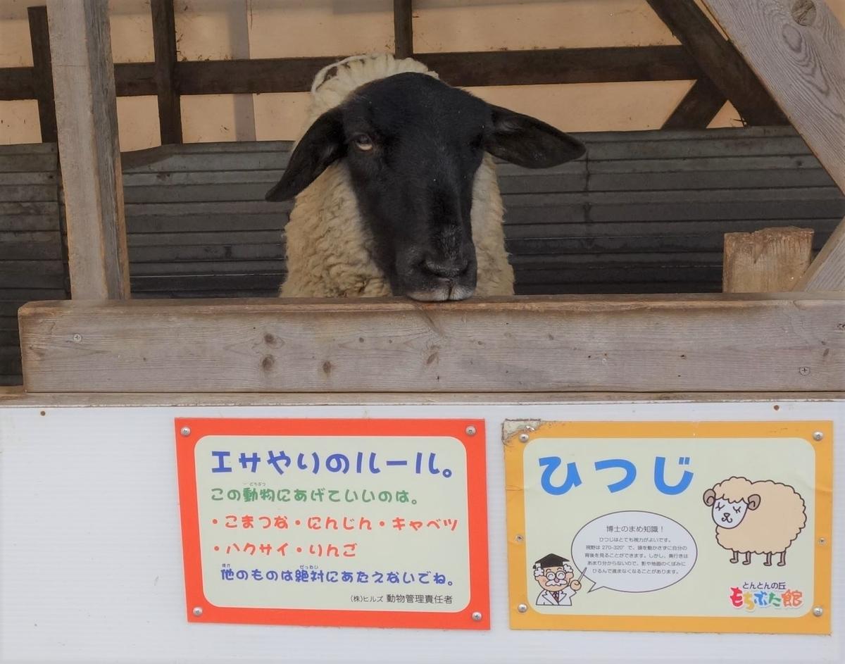 f:id:UrushiUshiru:20190416160611j:plain