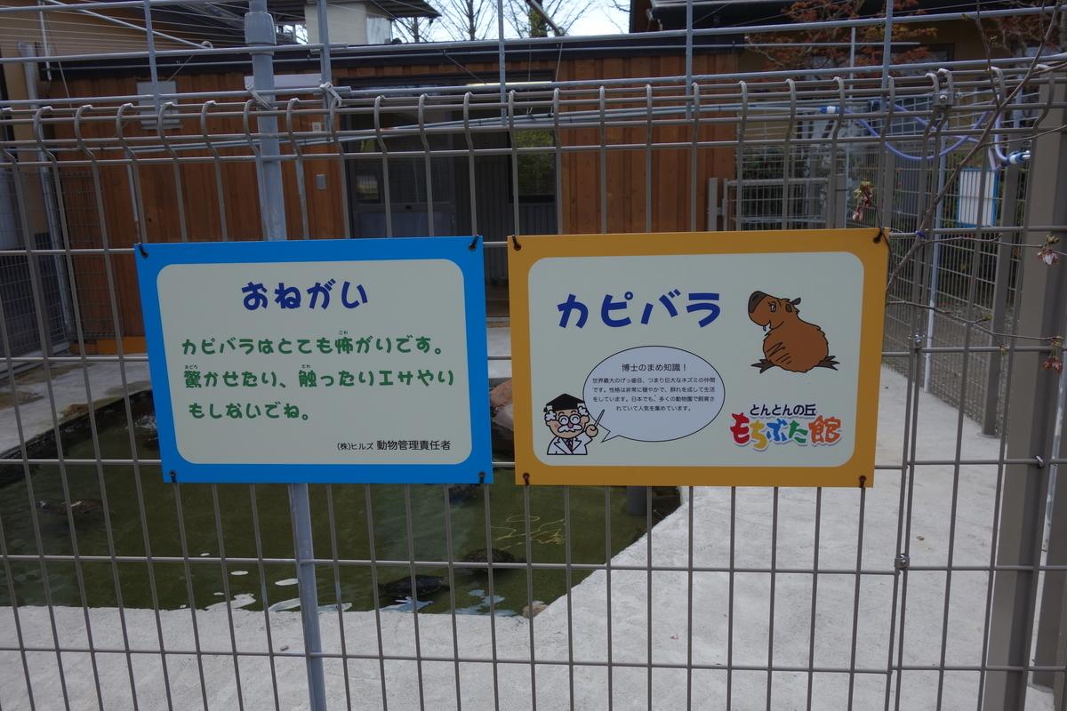 f:id:UrushiUshiru:20190416204618j:plain