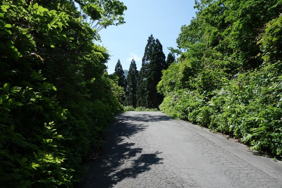 f:id:UrushiUshiru:20190616041850j:plain