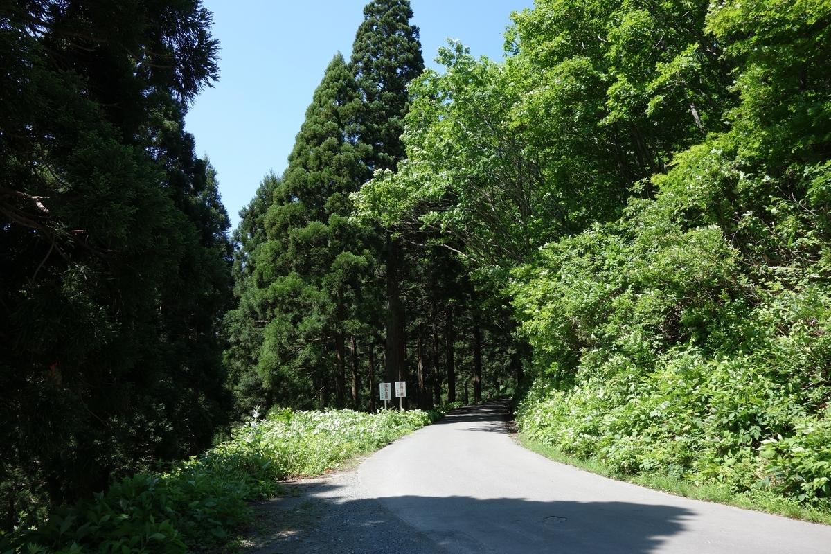f:id:UrushiUshiru:20190616041858j:plain
