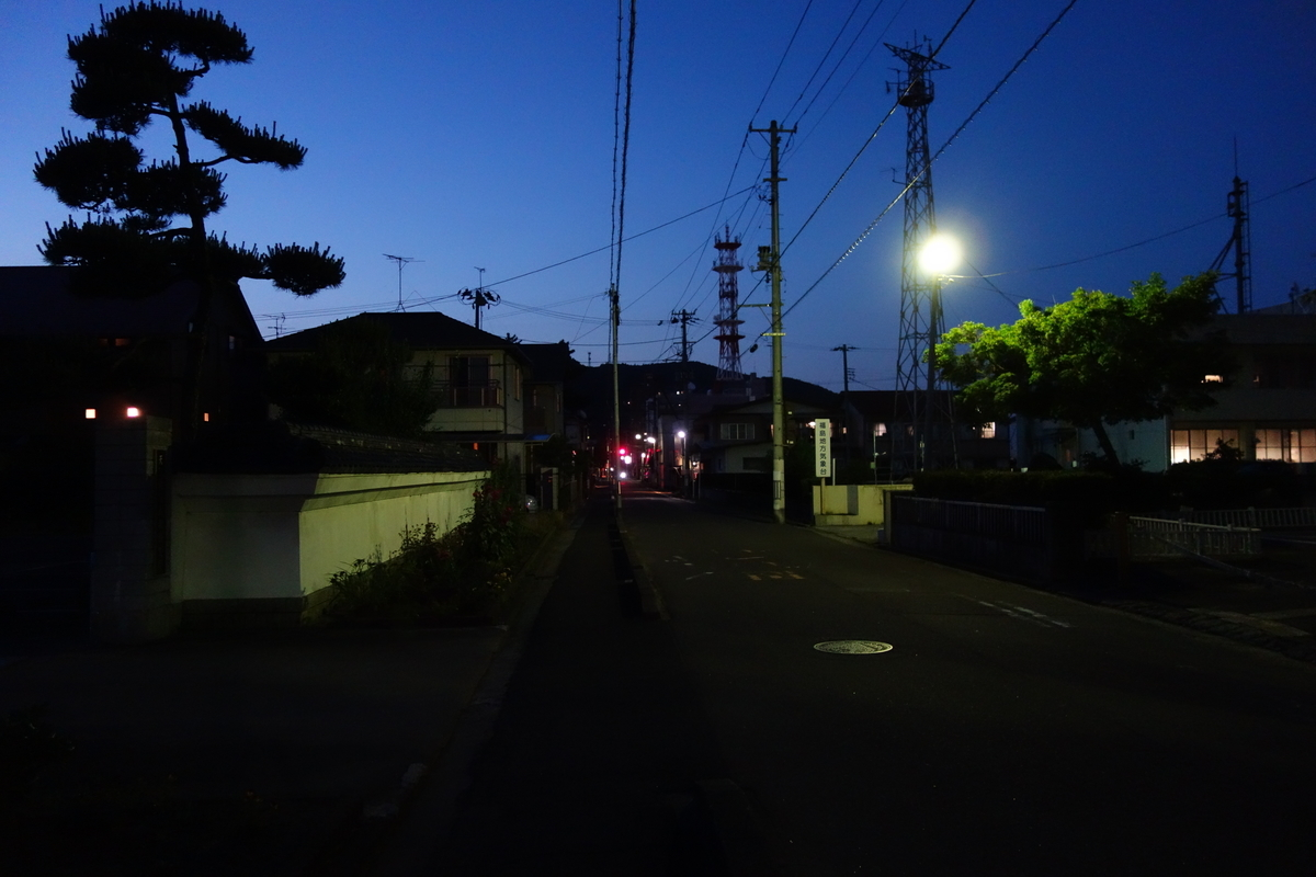 f:id:UrushiUshiru:20190620174903j:plain