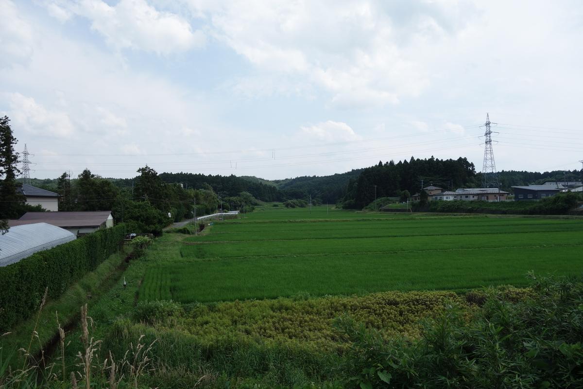 f:id:UrushiUshiru:20190703000424j:plain