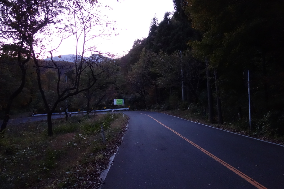 f:id:UrushiUshiru:20191108032136j:plain