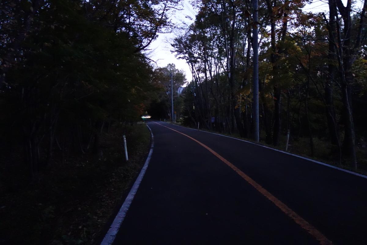 f:id:UrushiUshiru:20191108032247j:plain