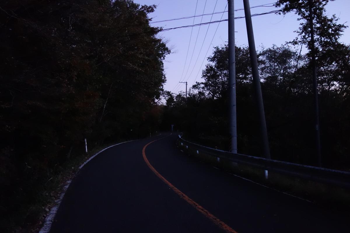 f:id:UrushiUshiru:20191117004627j:plain