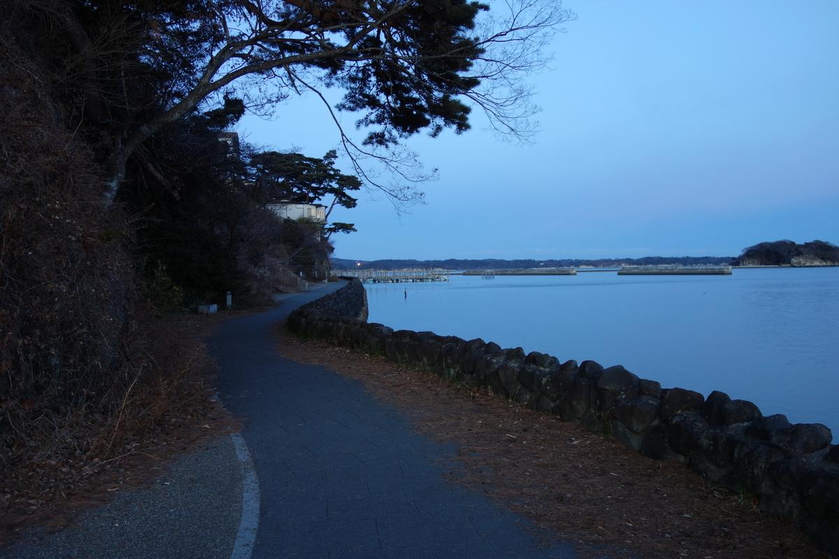 f:id:UrushiUshiru:20200118164116j:plain