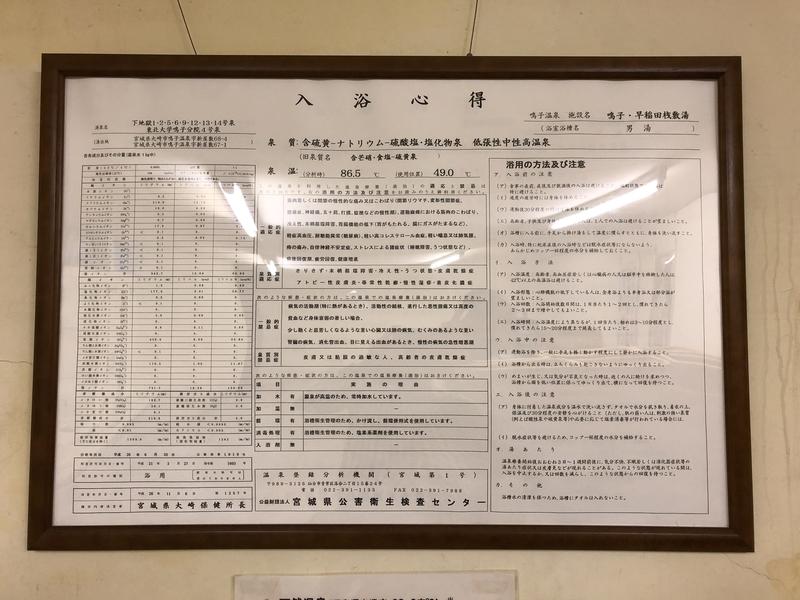 f:id:UrushiUshiru:20200128184647j:plain