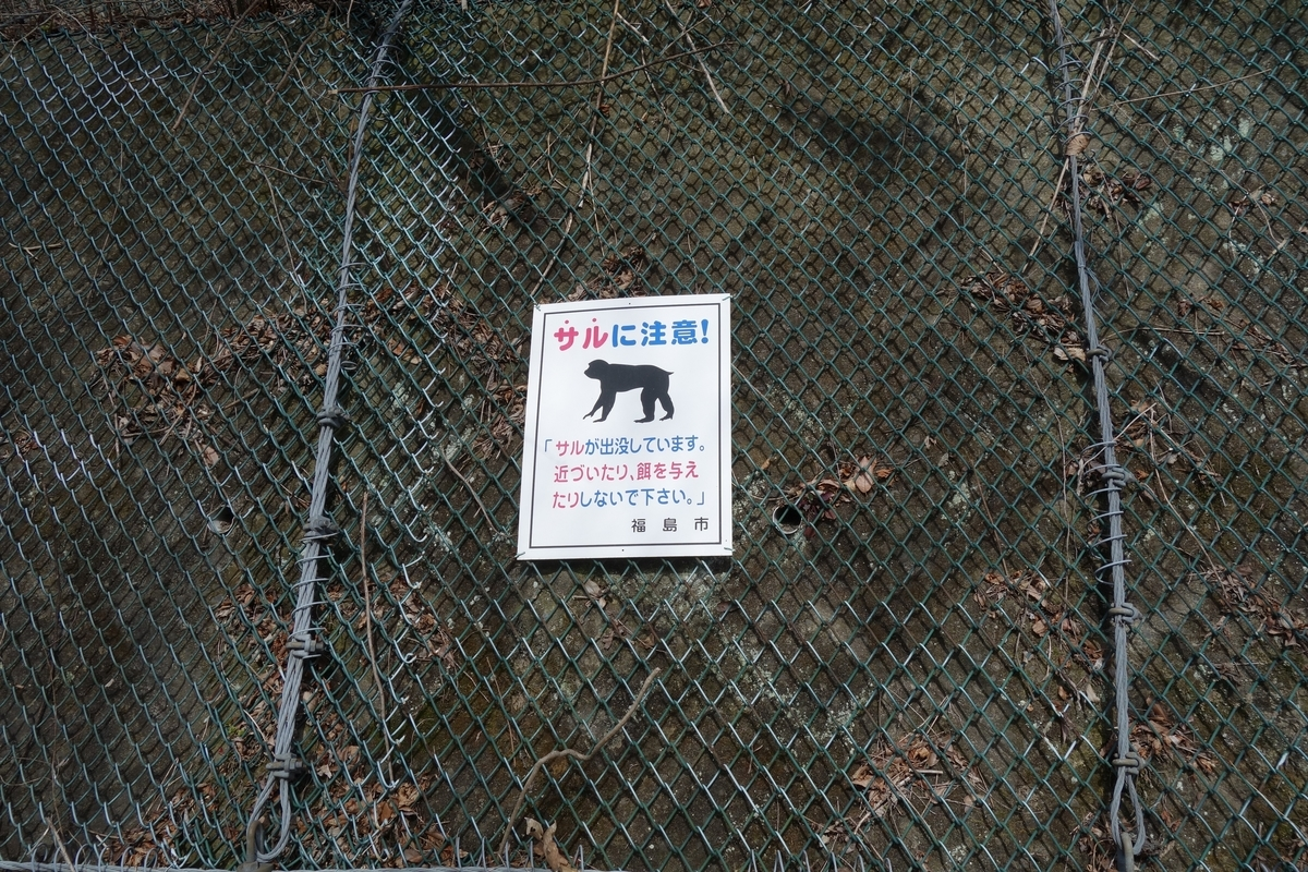 f:id:UrushiUshiru:20200311131808j:plain