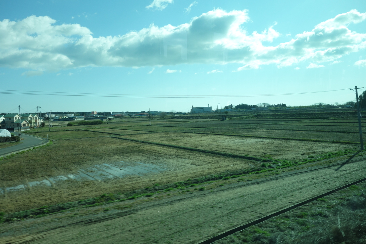 f:id:UrushiUshiru:20200320023044j:plain