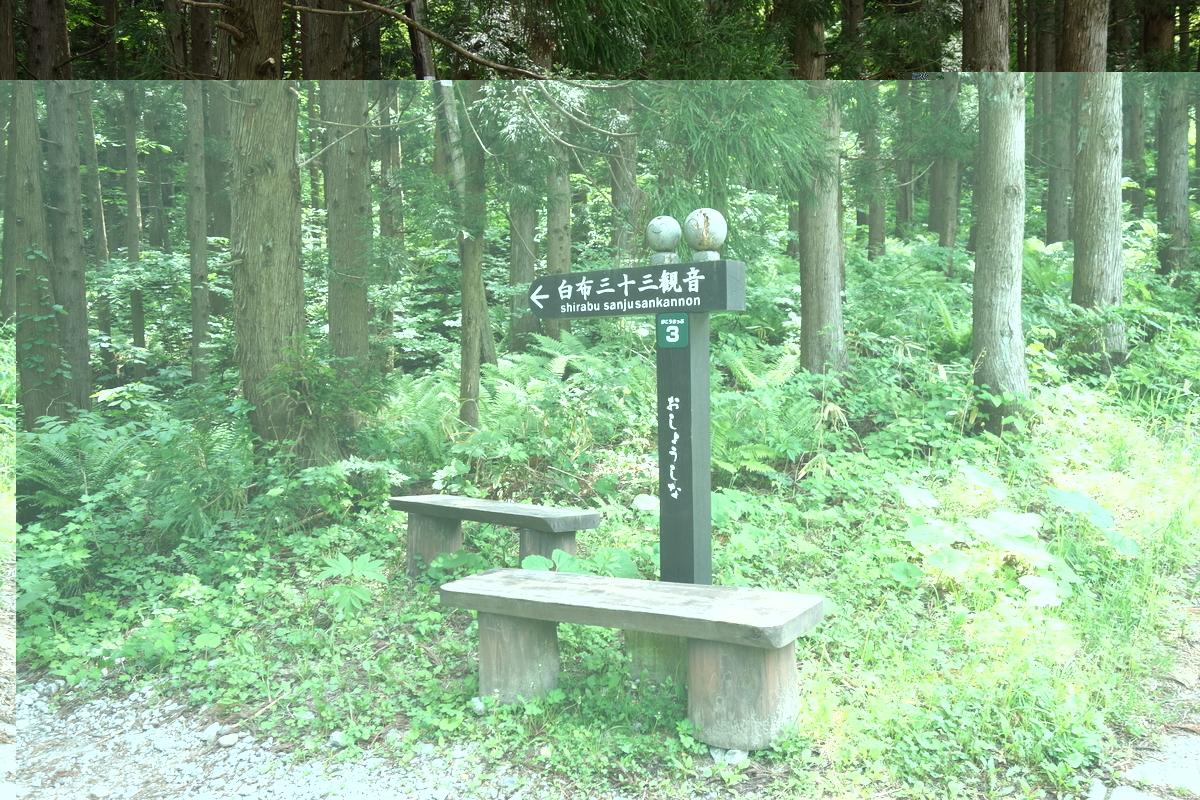 f:id:UrushiUshiru:20200605192035j:plain