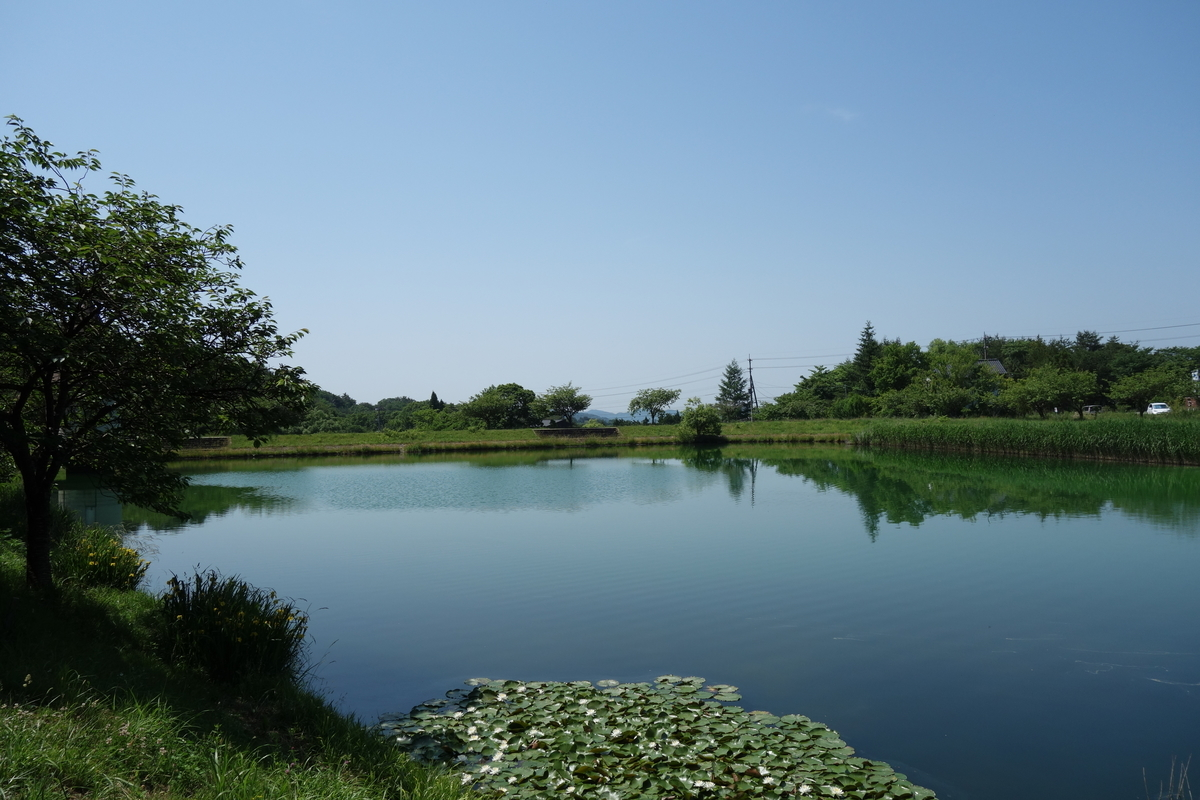 f:id:UrushiUshiru:20200617004640j:plain