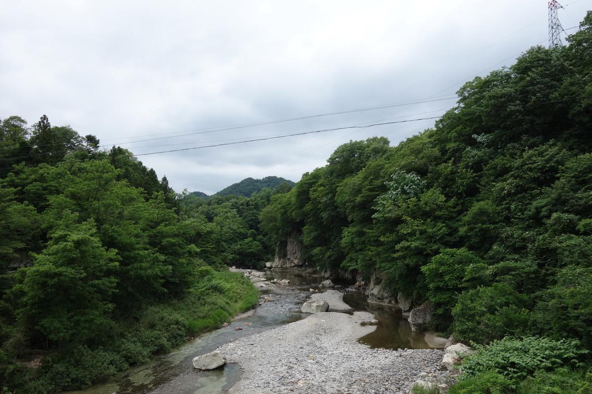 f:id:UrushiUshiru:20200618235512j:plain