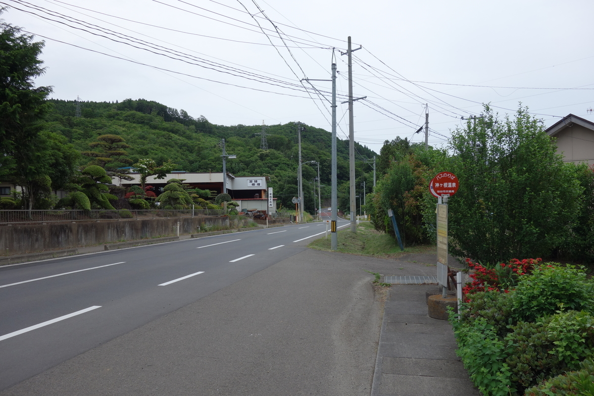 f:id:UrushiUshiru:20200621012719j:plain