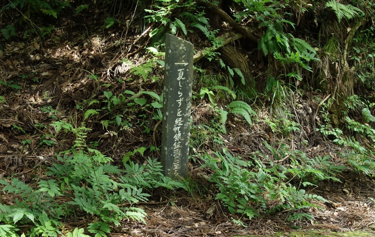 f:id:UrushiUshiru:20200728004103j:plain