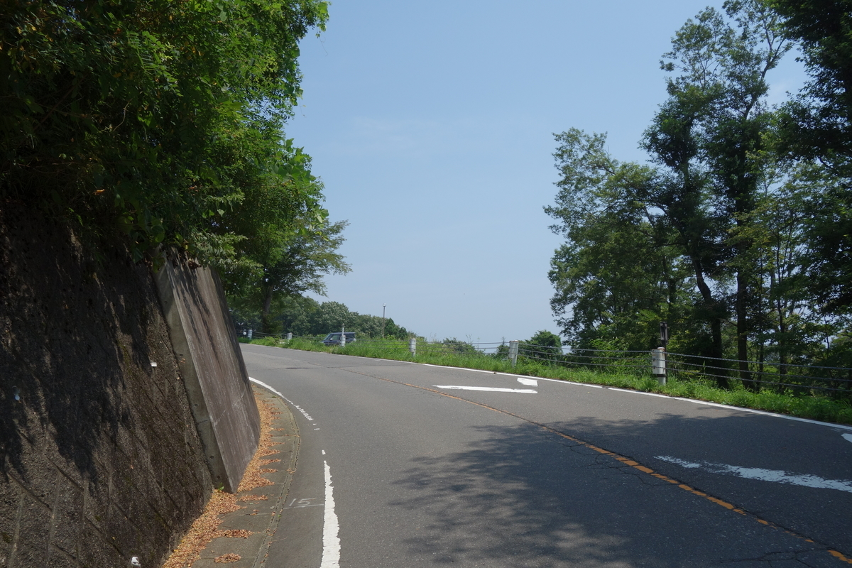 f:id:UrushiUshiru:20200809161007j:plain