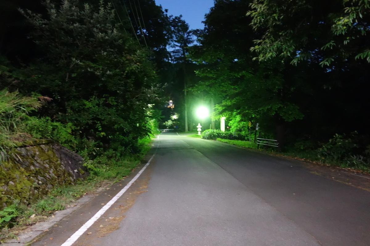 f:id:UrushiUshiru:20200830221530j:plain