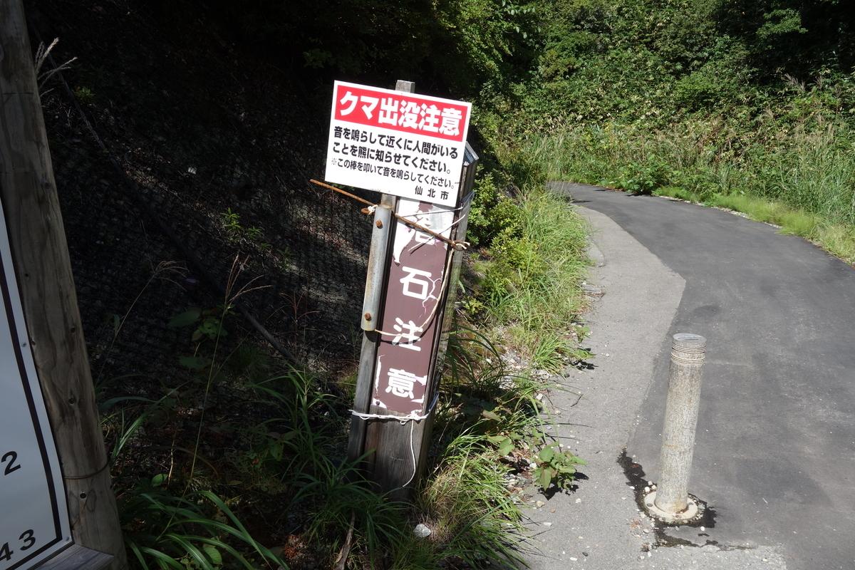 f:id:UrushiUshiru:20201010023055j:plain