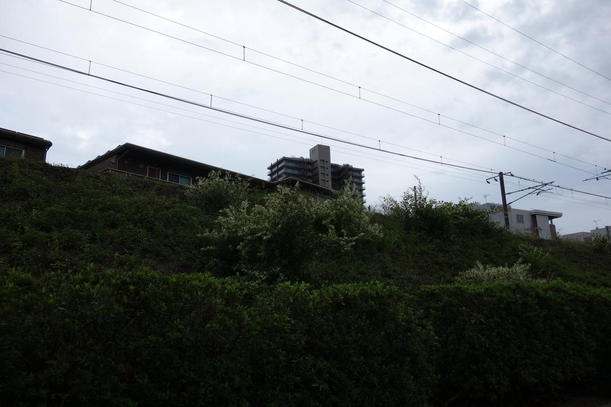 f:id:UrushiUshiru:20201026140013j:plain