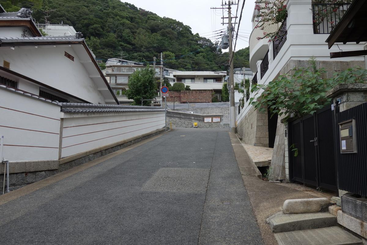 f:id:UrushiUshiru:20201026142137j:plain