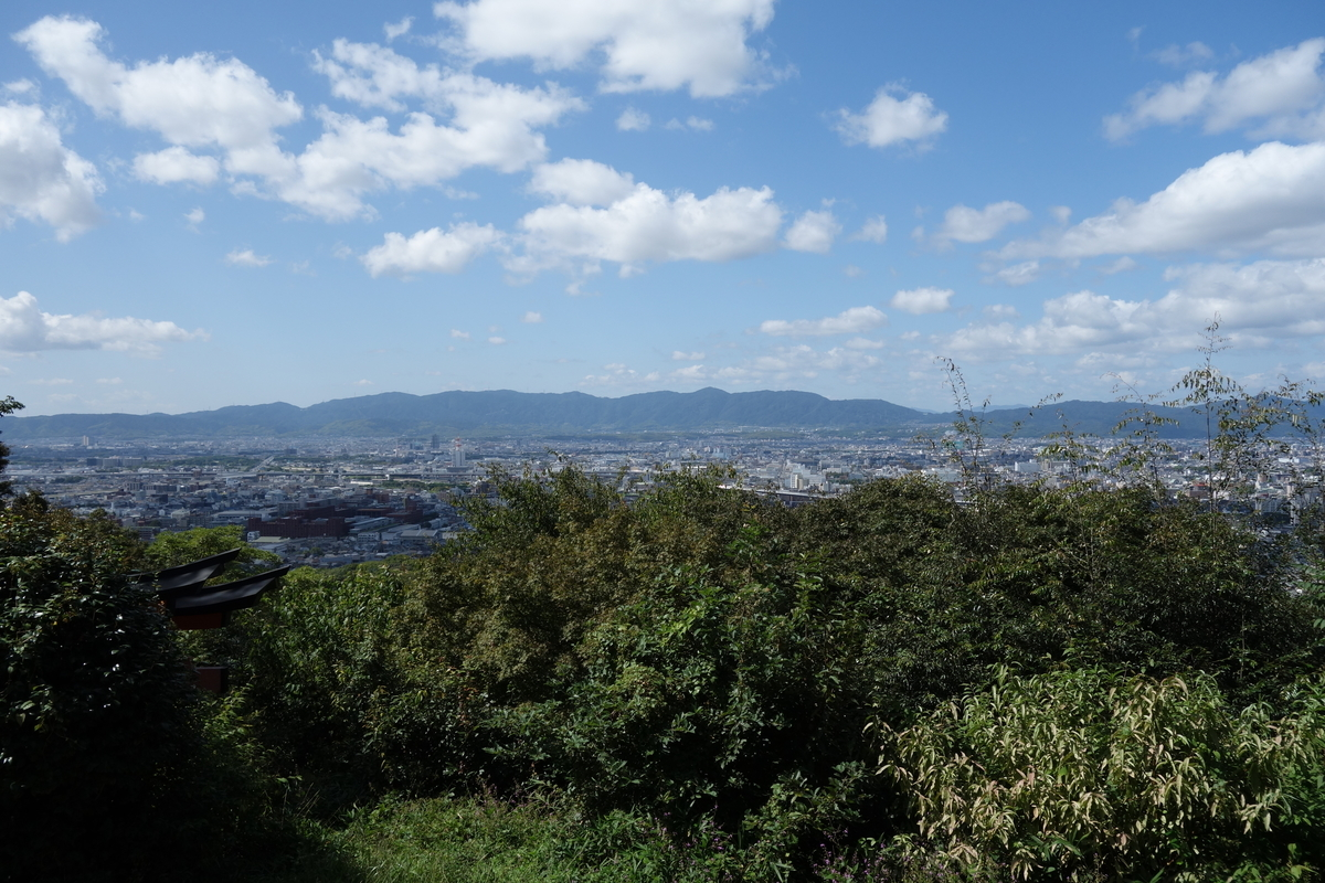 f:id:UrushiUshiru:20201103153759j:plain