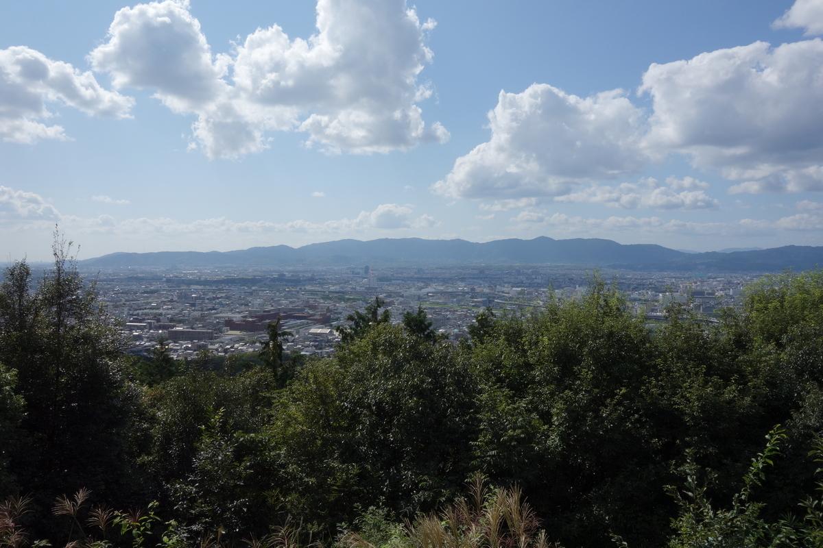 f:id:UrushiUshiru:20201103163627j:plain