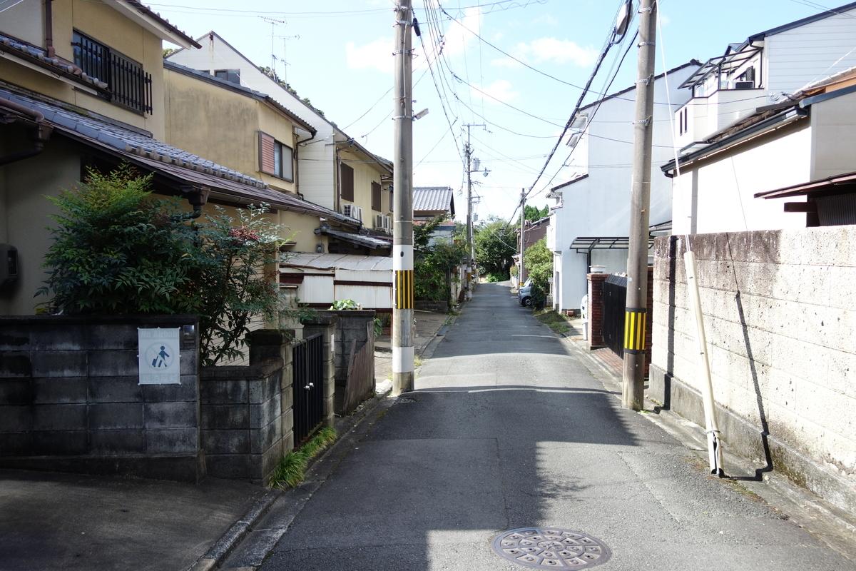 f:id:UrushiUshiru:20201103164511j:plain