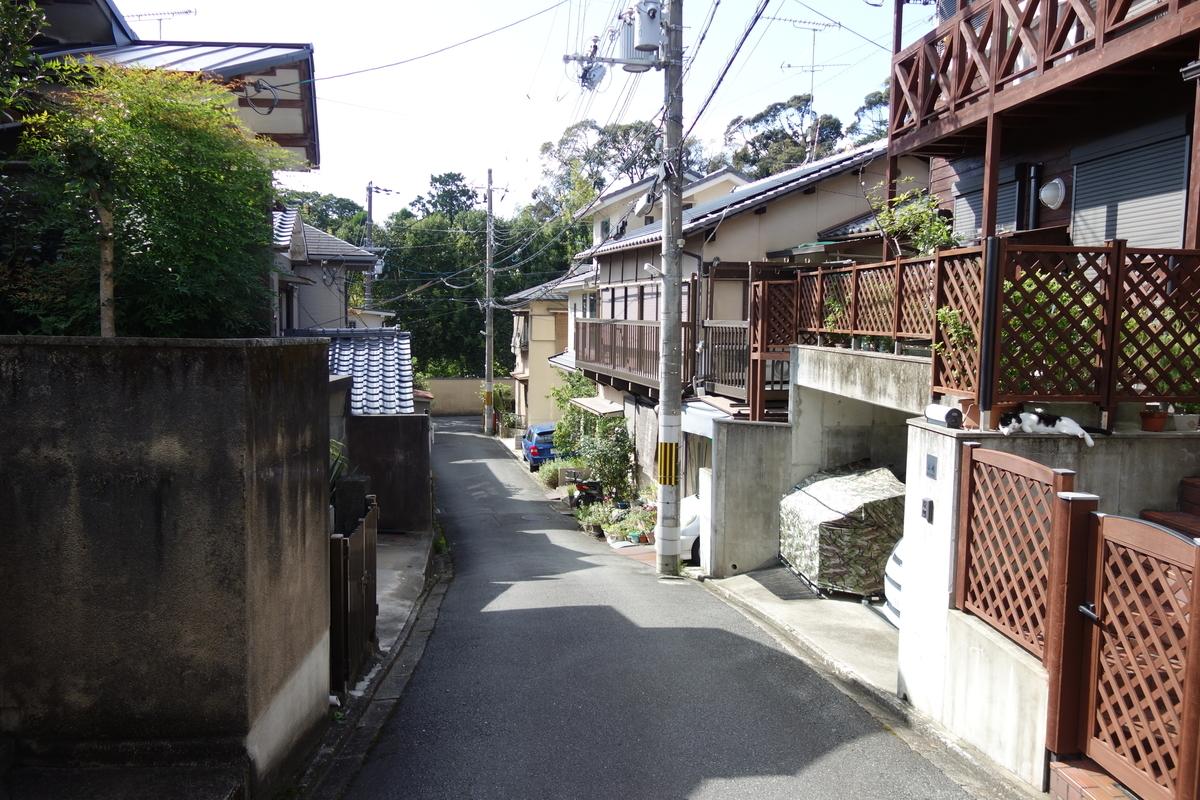 f:id:UrushiUshiru:20201103164601j:plain