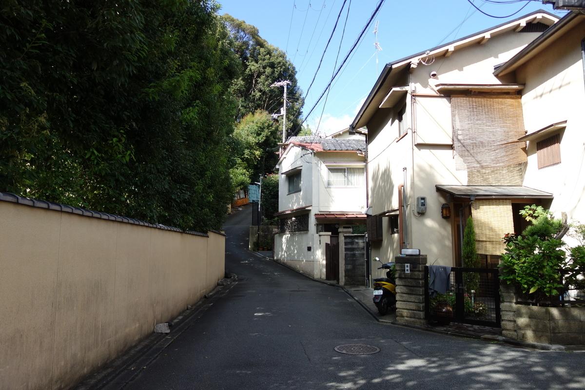 f:id:UrushiUshiru:20201103164848j:plain