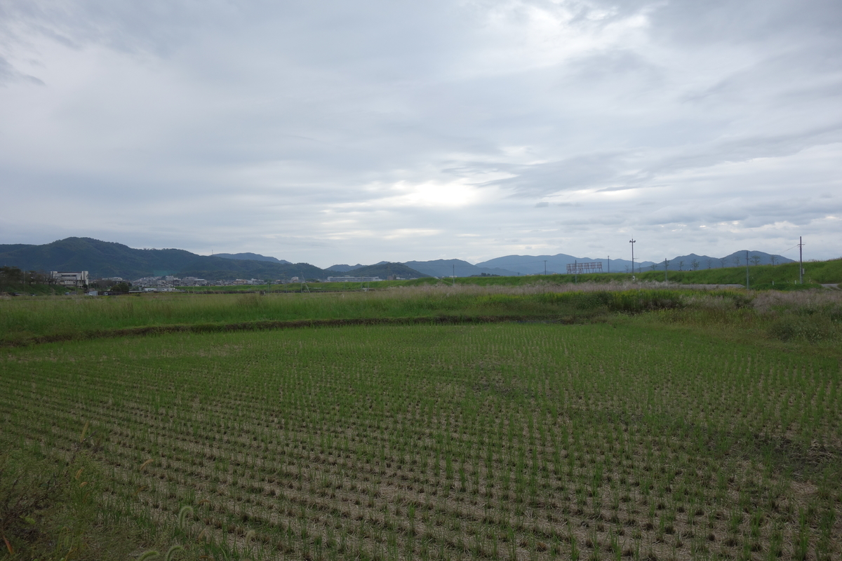 f:id:UrushiUshiru:20201111144855j:plain