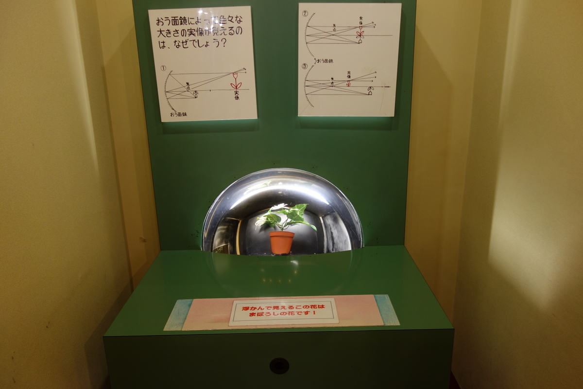 f:id:UrushiUshiru:20201207015922j:plain