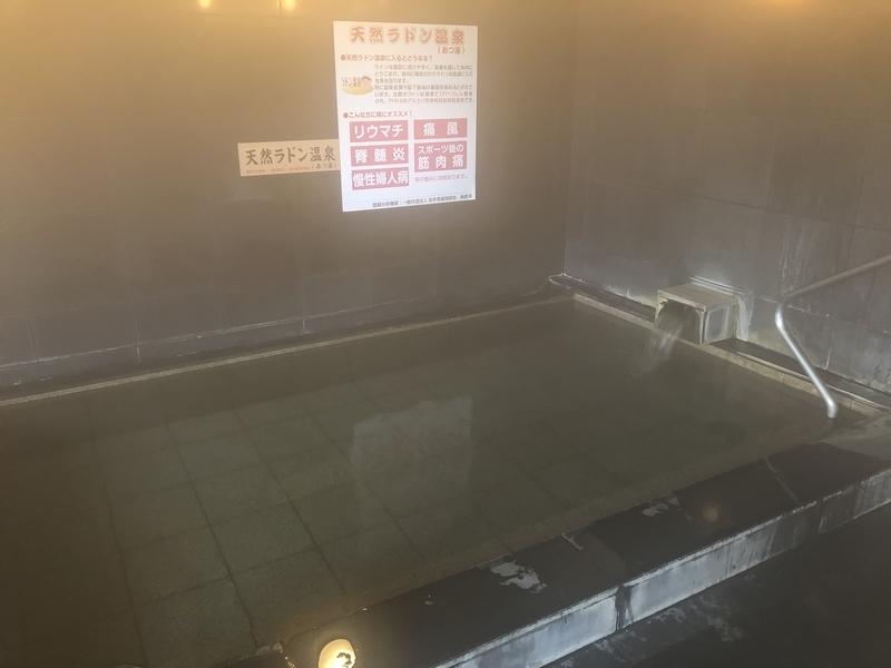 f:id:UrushiUshiru:20201215181347j:plain