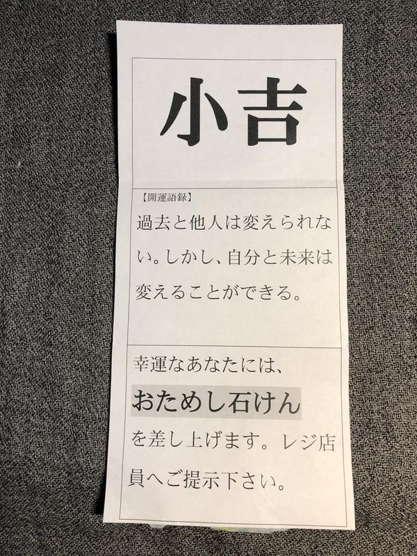 f:id:UrushiUshiru:20210114020047j:plain