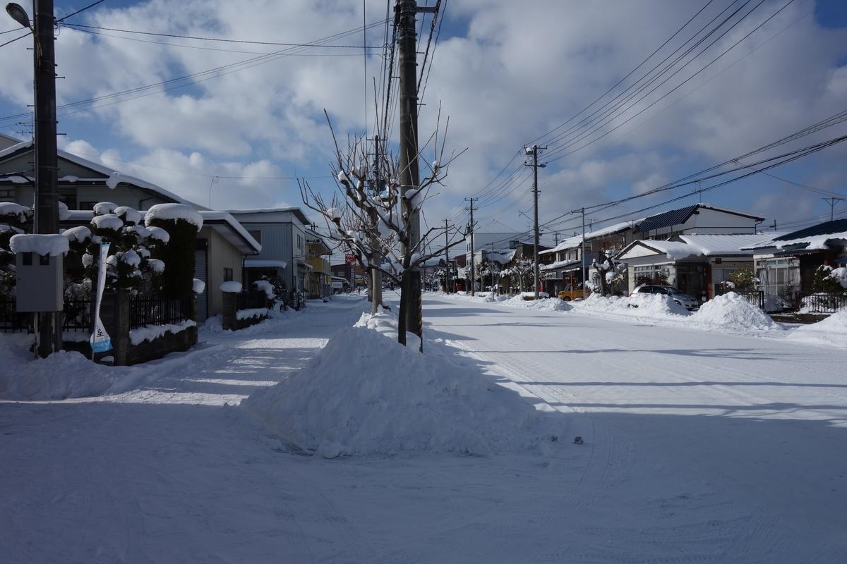 f:id:UrushiUshiru:20210121022557j:plain