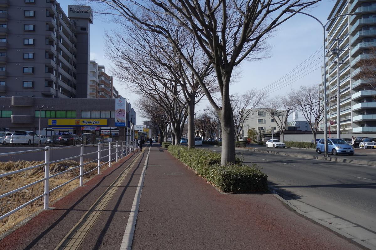 f:id:UrushiUshiru:20210202014652j:plain