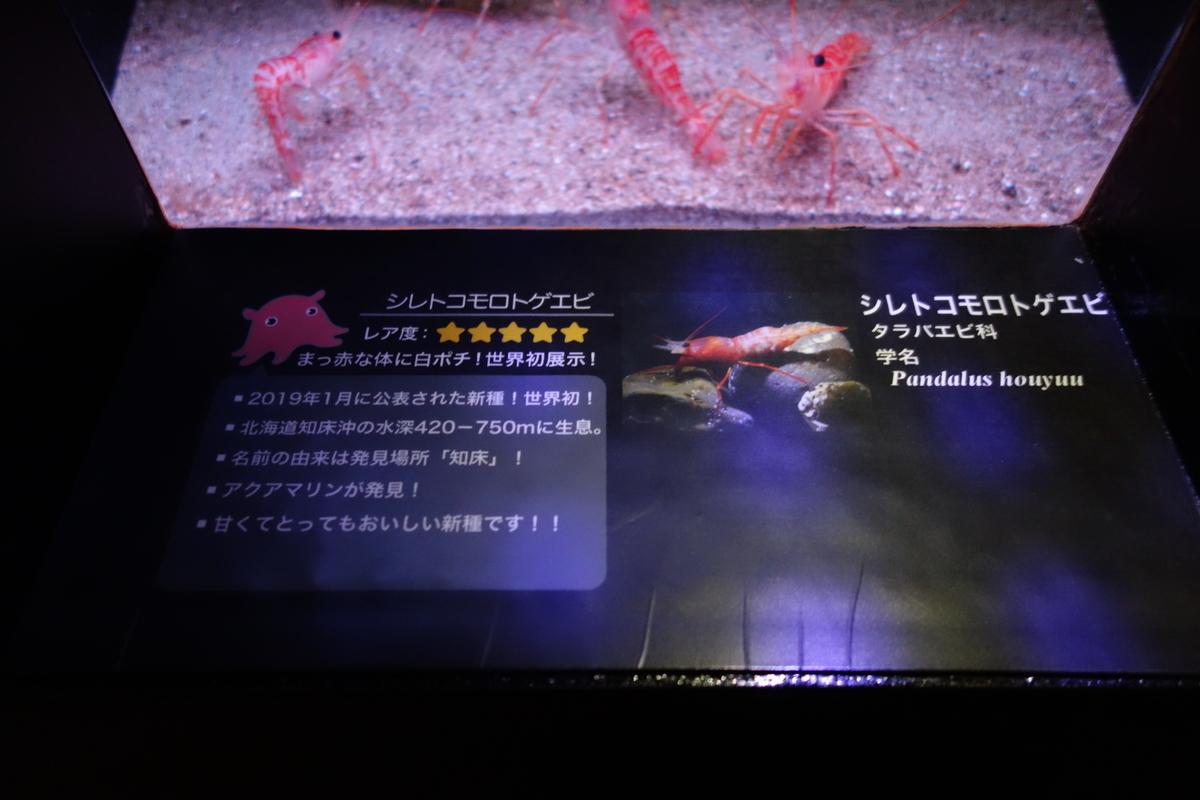 f:id:UrushiUshiru:20210302030232j:plain
