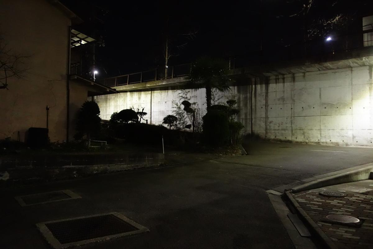 f:id:UrushiUshiru:20210401013026j:plain