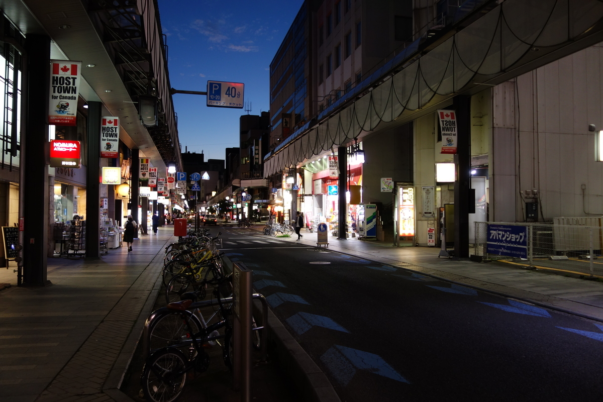 f:id:UrushiUshiru:20210701032124j:plain