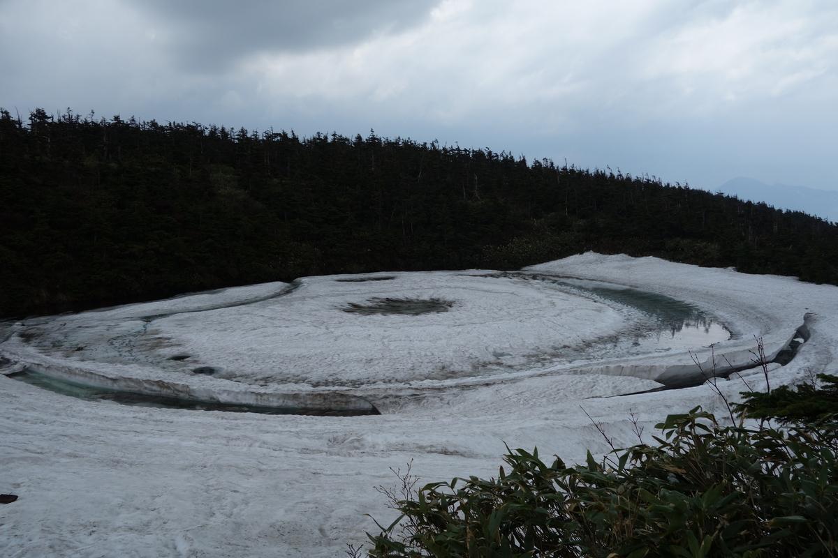 f:id:UrushiUshiru:20210702020119j:plain