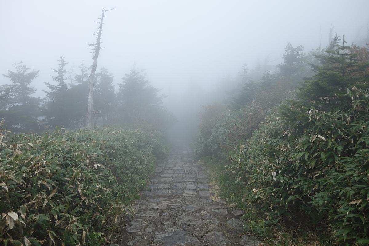 f:id:UrushiUshiru:20210702021623j:plain