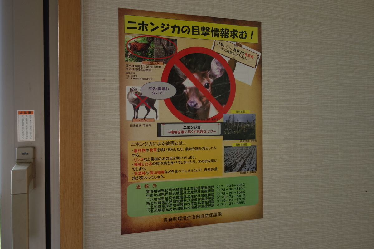 f:id:UrushiUshiru:20210807030920j:plain
