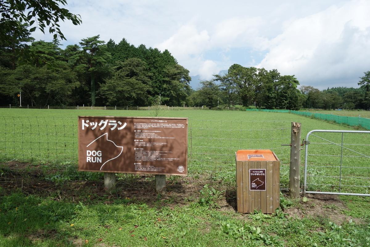 f:id:UrushiUshiru:20210917030930j:plain