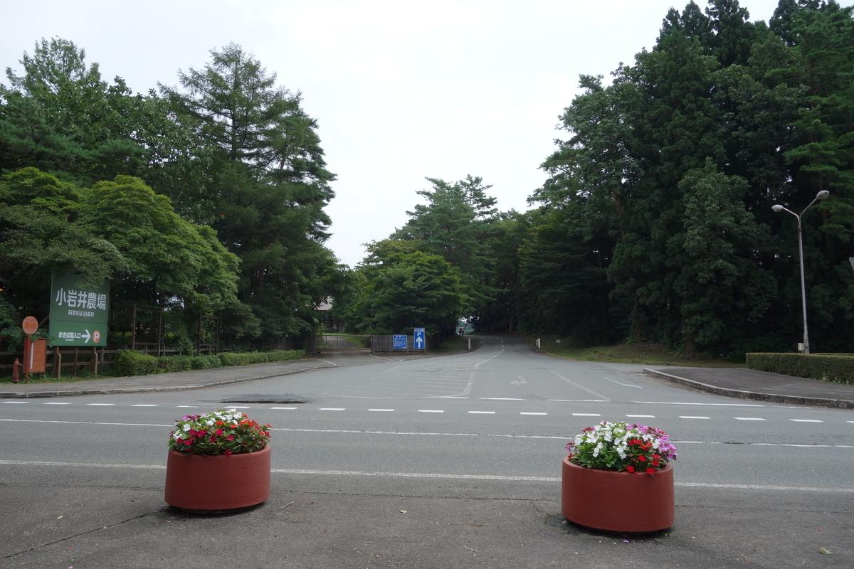 f:id:UrushiUshiru:20210917032356j:plain