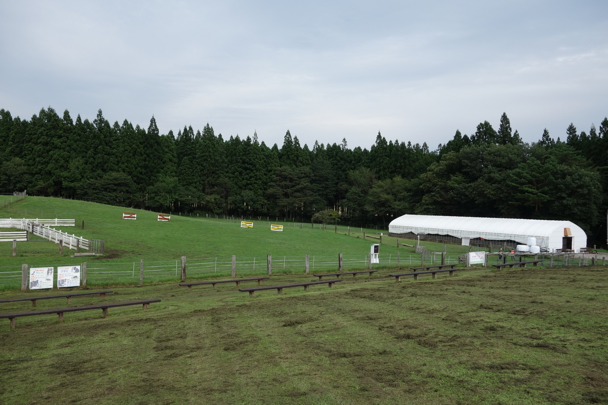 f:id:UrushiUshiru:20210924020107j:plain