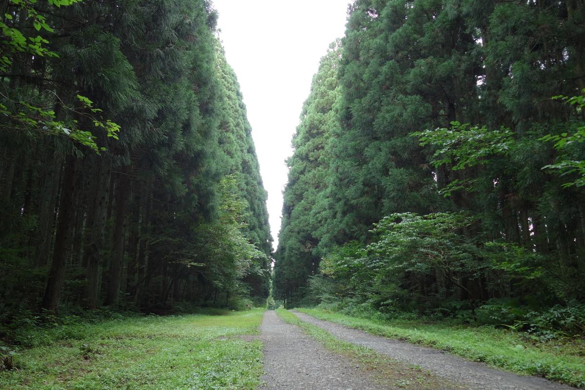 f:id:UrushiUshiru:20210930015341j:plain