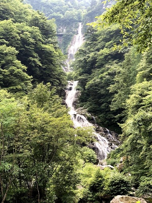 精進ヶ滝 アップ